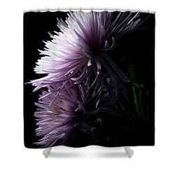 Shower Curtain featuring the photograph Mum, No.6 by Eric Christopher Jackson