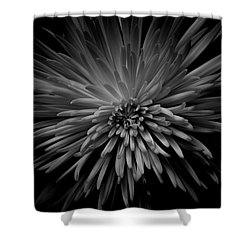 Shower Curtain featuring the photograph Mum. No.7 by Eric Christopher Jackson