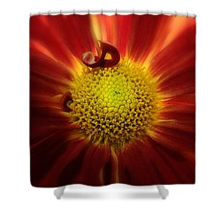 Mum Red Rover Shower Curtain