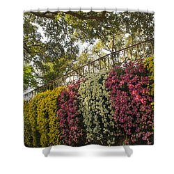 Shower Curtain featuring the photograph Mum's The Word by Julie Andel