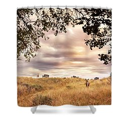 Munson Morning Shower Curtain by John Poon