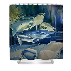 Shower Curtain featuring the painting Mural Skulls Of Lifes Past by Nancy Griswold