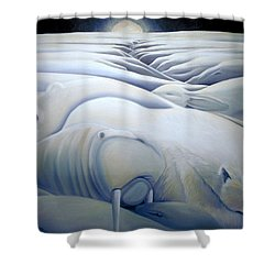 Mural  Winters Embracing Crevice Shower Curtain by Nancy Griswold