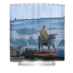 Mural In Chinatown Vancouver Shower Curtain