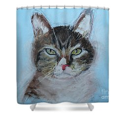 Murphy Shower Curtain