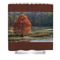 Shower Curtain featuring the photograph Muscatatuck - D009967 by Daniel Dempster