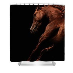 Muscle And Motion Shower Curtain