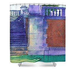 Museum Pool, Miami Shower Curtain