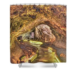Mushpot Cave Shower Curtain by Richard J Cassato