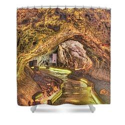 Mushpot Cave Shower Curtain