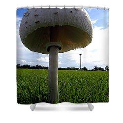 Mushroom 005 Shower Curtain