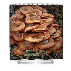 Mushroom Bouquet Shower Curtain