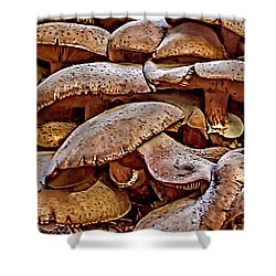 Shower Curtain featuring the photograph Mushroom Colony by Bill Gallagher