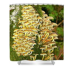Shower Curtain featuring the photograph Mushroom Colony Photo Art by Sharon Talson
