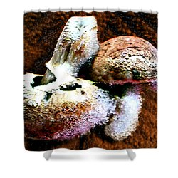 Mushroom Love Shower Curtain