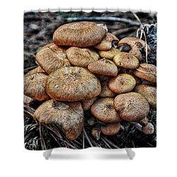 Mushroom Nest Shower Curtain