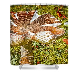 Mushroom Upclose Shower Curtain