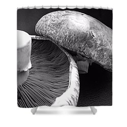 Mushrooms In Black And White Shower Curtain