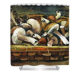 Mushrooms Shower Curtain by Mikhail Zarovny