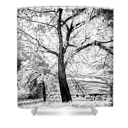 Shower Curtain featuring the photograph Music Moves The Soul by Dan Jurak