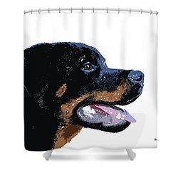 Shower Curtain featuring the digital art Music Notes 33 by David Bridburg