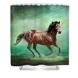 Music To My Ears Shower Curtain