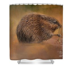 Muskrat Snack Shower Curtain