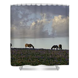 Mustang Group 17 Shower Curtain