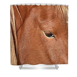 Mustang Macro Shower Curtain