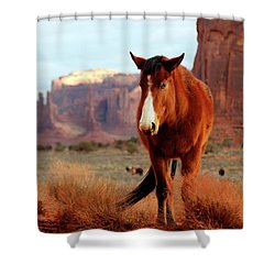 Shower Curtain featuring the photograph Mustang by Nicholas Blackwell