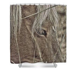 Mustango Shower Curtain