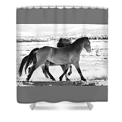 Mustangs Shower Curtain