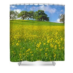 Shower Curtain featuring the photograph Mustard Field by Mark Greenberg
