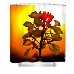 Mustard Sunset Shower Curtain