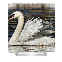 Mute Swan Shower Curtain by Kathy Baccari