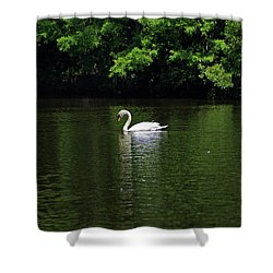 Shower Curtain featuring the photograph Mute Swan by Sandy Keeton