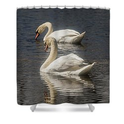 Shower Curtain featuring the photograph Mute Swans by David Bearden