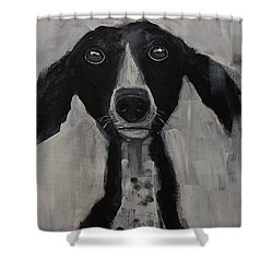 Mutts Original Dog Portrait Painting Shower Curtain by Gray Artus