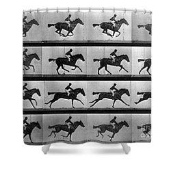 Muybridge Locomotion Racehorse Shower Curtain by Photo Researchers