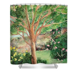 Shower Curtain featuring the painting My Backyard by Vicki  Housel