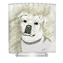 My Bella Shower Curtain