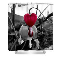 My Bleeding Heart Shower Curtain