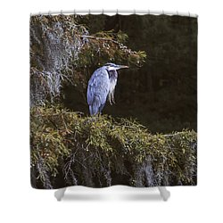 Shower Curtain featuring the photograph My Blue Heron by Phil Mancuso