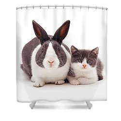 My Brother From Another Mother Shower Curtain