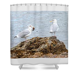 Shower Curtain featuring the photograph My Crab Go Away by Debbie Stahre