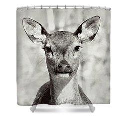 My Dear Shower Curtain by Jessica Brawley