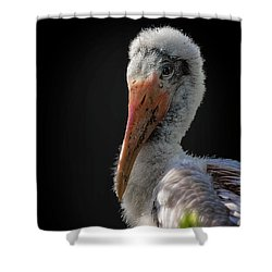 My First Sitting Shower Curtain