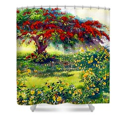 My Flamboyant Tree Shower Curtain by Estela Robles