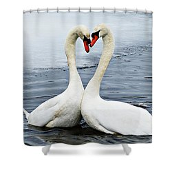 My Funny Valentine Shower Curtain