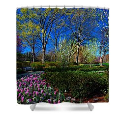 My Garden In Spring Shower Curtain by Diana Mary Sharpton